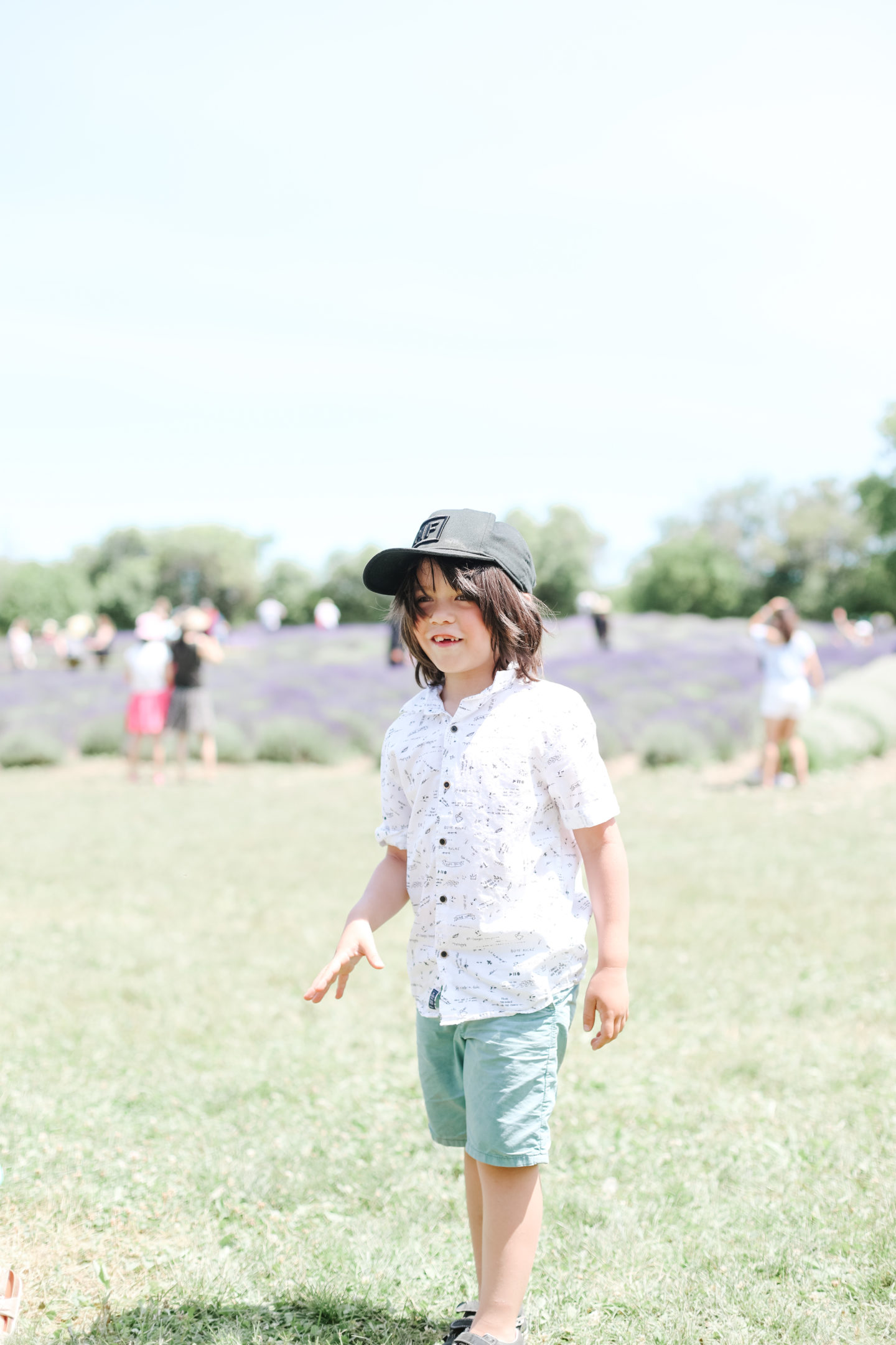 lavender field and a boy