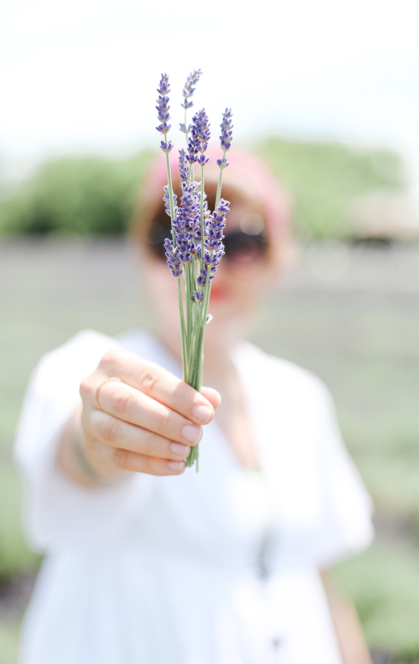 a detail of lavender bouquet in a field
