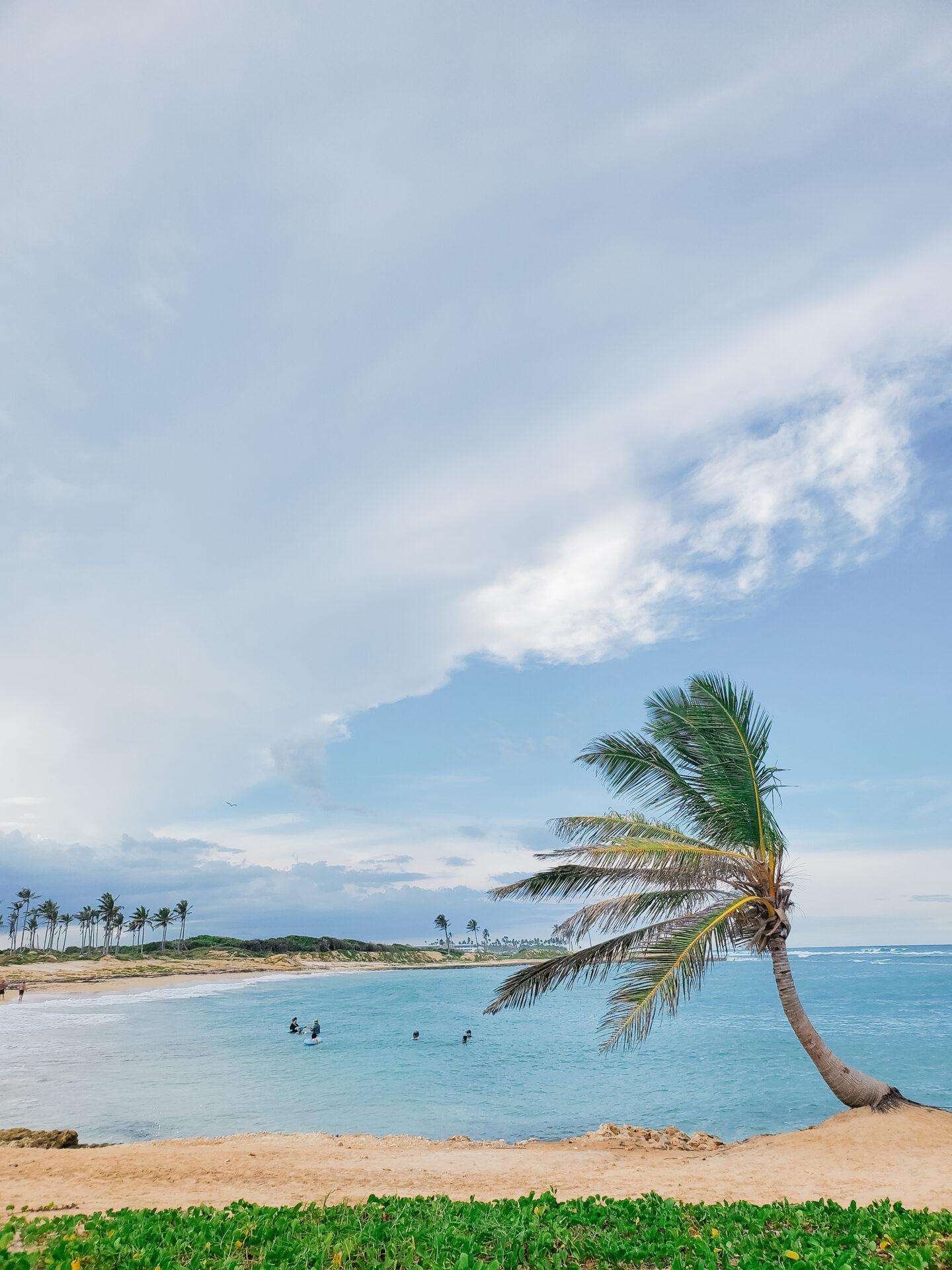 Ocean el faro punta cana beach
