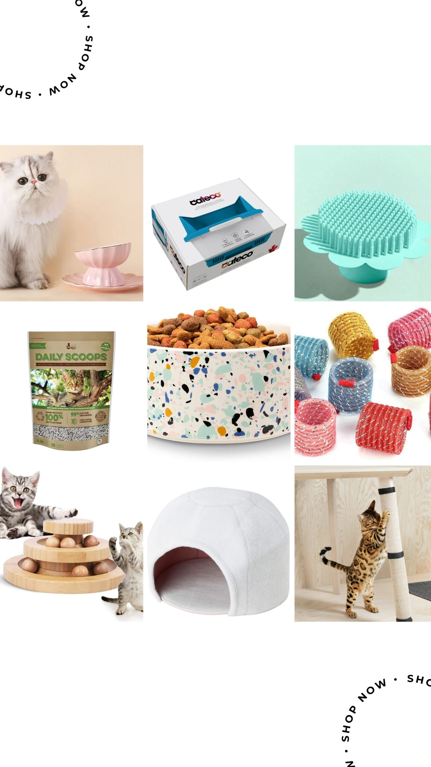 Stylish cat products you need to try in 2021