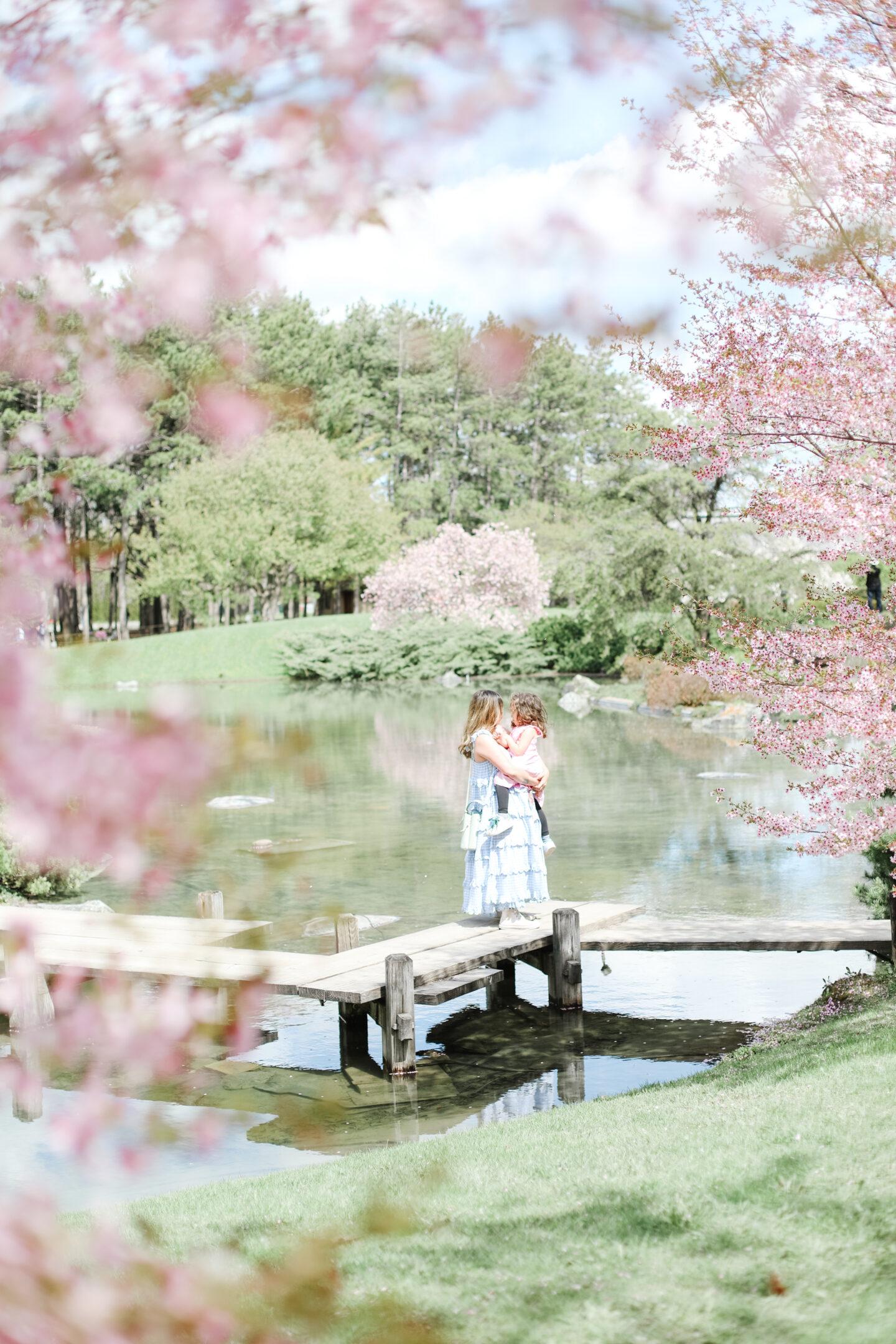 Jardin Botanique Spring