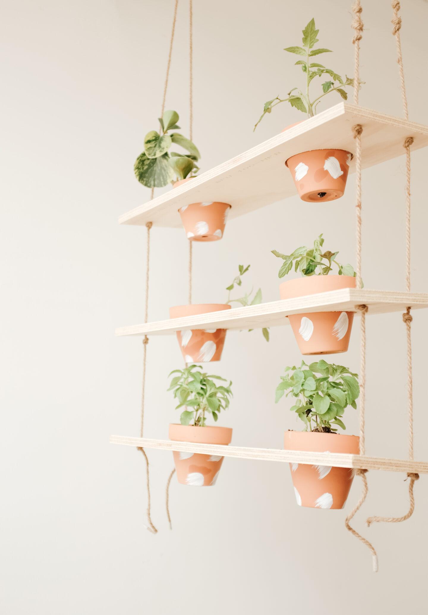 Vertical garden DIY project